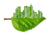green konsep